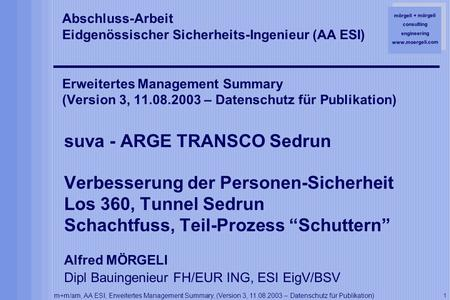 Mörgeli + mörgeli consulting engineering www.moergeli.com m+m/am, AA ESI, Erweitertes Management Summary, (Version 3, 11.08.2003 – Datenschutz für Publikation)