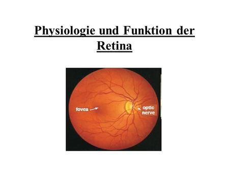 Physiologie und Funktion der Retina. Literatur How the retina works H.Kolb, American Scientist, 2003 The fundamental plan of the retina R.H.Masland, Nature.