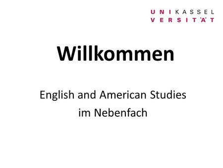 English and American Studies im Nebenfach