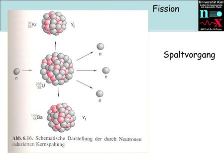 Spaltvorgang Fission. Spaltprodukte Deformation des Angeregten Compoundkerns.