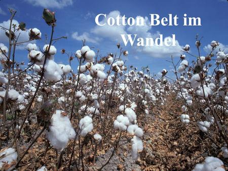 Cotton Belt im Wandel Cotton Belt im Wandel.
