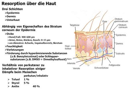 Resorption über die Haut