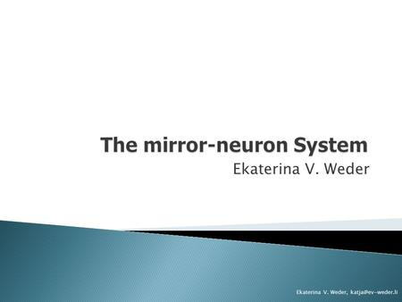 The mirror-neuron System