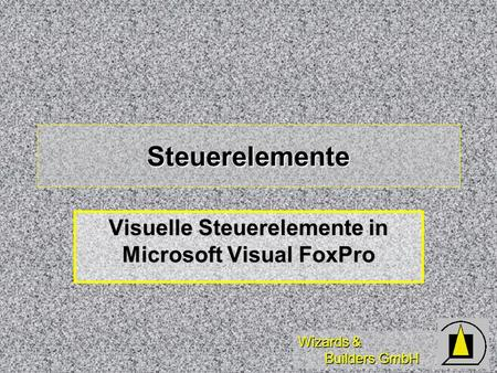 Wizards & Builders GmbH Steuerelemente Visuelle Steuerelemente in Microsoft Visual FoxPro.