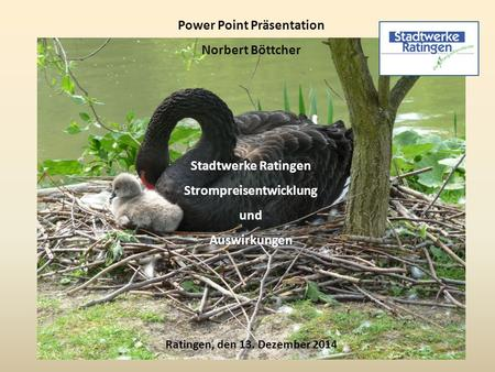 Power Point Präsentation Strompreisentwicklung