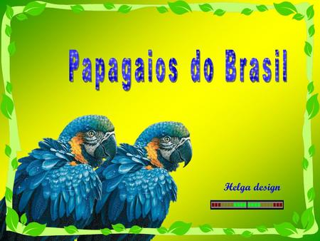 Helga design Music : Brazil National Anthem Song by brazilin birds-Photos from web.
