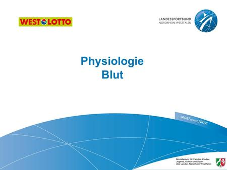 Physiologie Blut  ​.