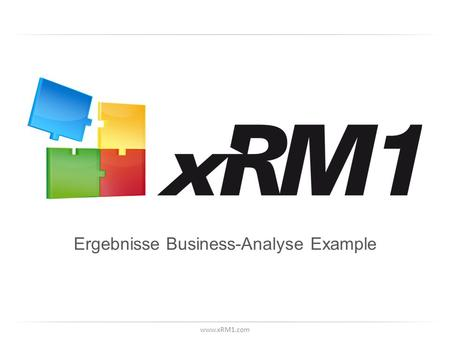 Www.xRM1.com Ergebnisse Business-Analyse Example.