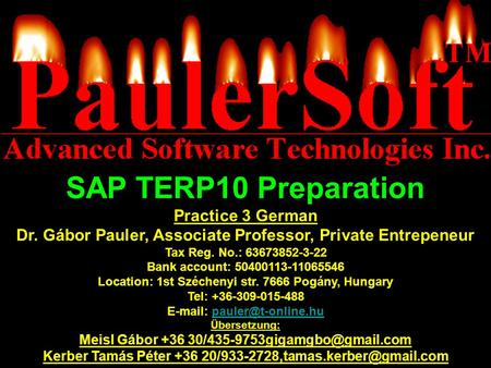SAP TERP10 Preparation Practice 3 German
