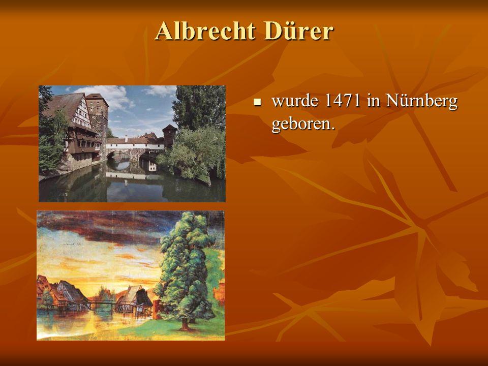 Dürers Geburtshaus befand sich in der Winklerstraße. befand sich in der Winklerstraße.