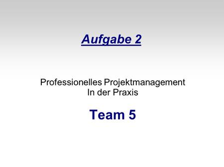 Professionelles Projektmanagement In der Praxis Team 5