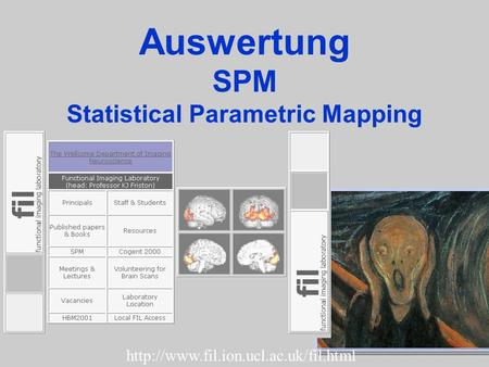 Auswertung SPM Statistical Parametric Mapping