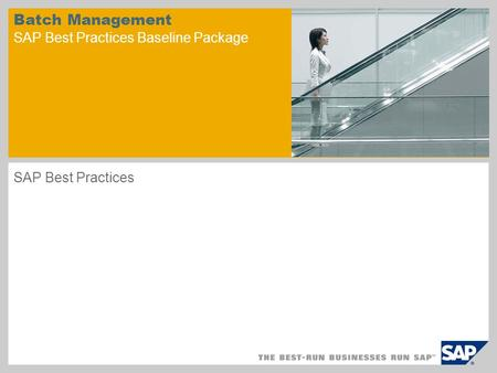 Batch Management SAP Best Practices Baseline Package SAP Best Practices.