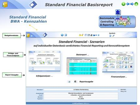 Standard Financial BWA - Kennzahlen Standard Financial Basisreport Basismodule Controlling & Reporting.