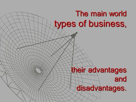 The main world types of business, their advantages and disadvantages.