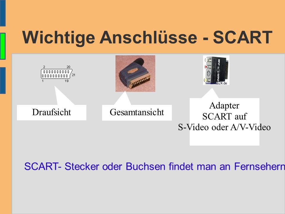 Wichtige Anschlüsse – S-Video ● S-Video S-Video-Stecker oder Buchsen finden sie häufig an Grafikkarten, Laptops, Beamern