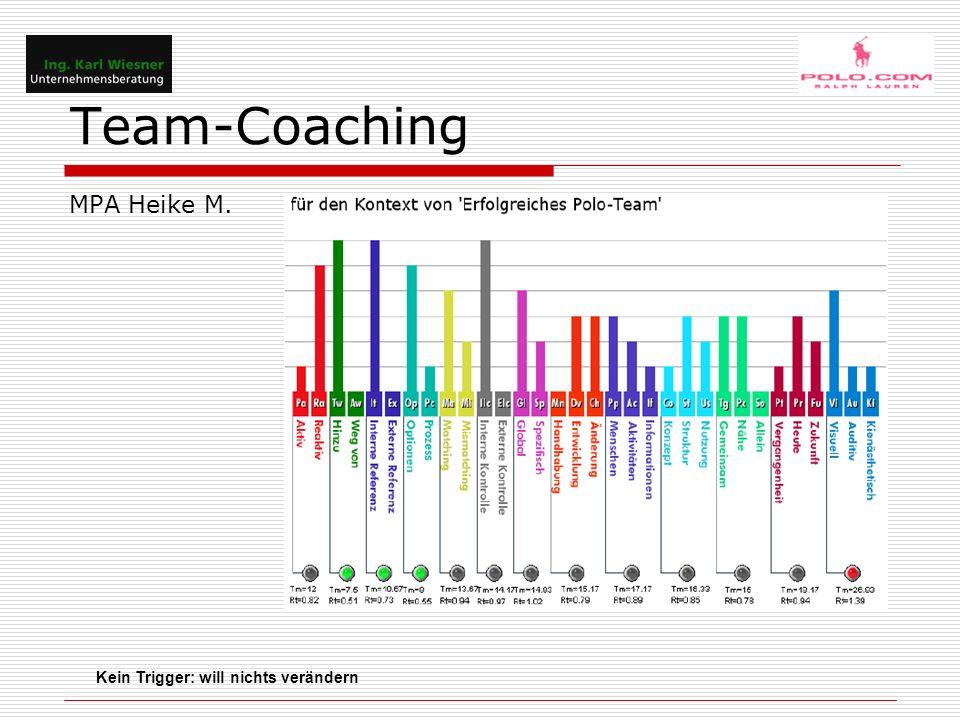 Team-Coaching Mons S.Manager Customer Support 34 Jahre jung Schlechteres Arbeiten  disfunkt.