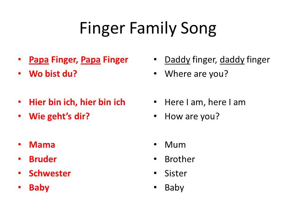 meine Familie die Mutter = the mum der Papa = the dad der Bruder = the brother