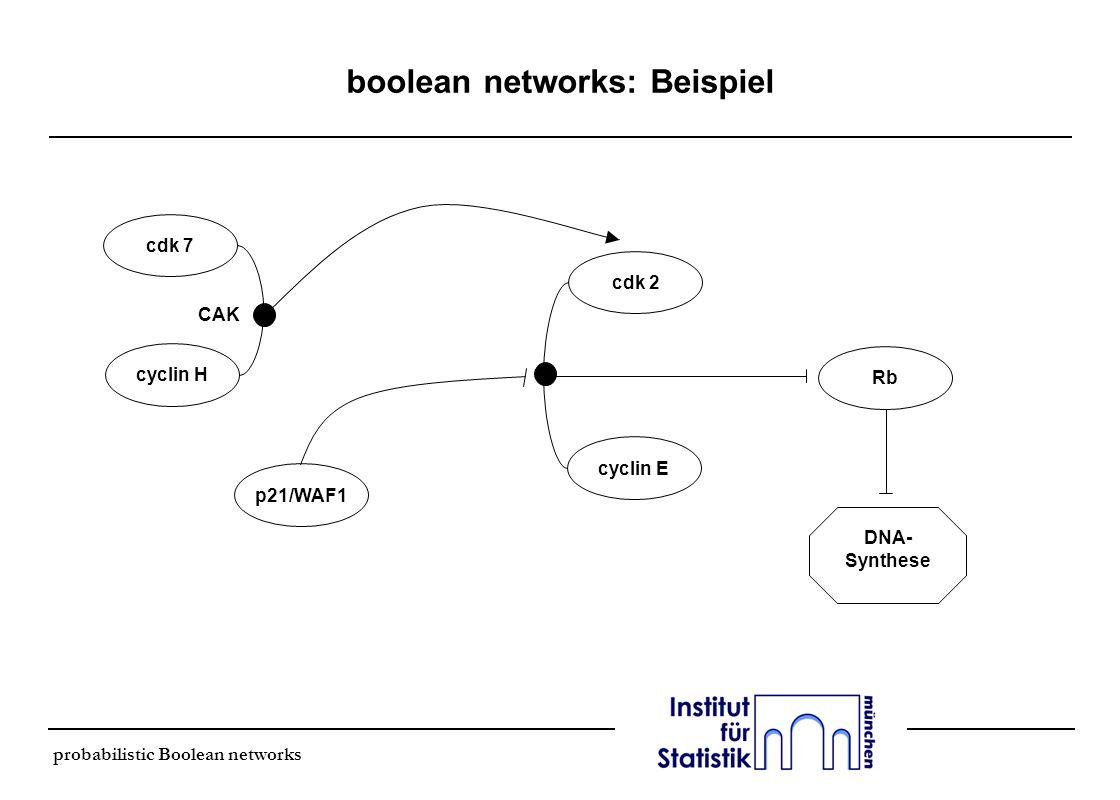 probabilistic Boolean networks boolean networks: Beispiel cdk 7 cyclin H cyclin E cdk 2 p21/WAF1 Rb