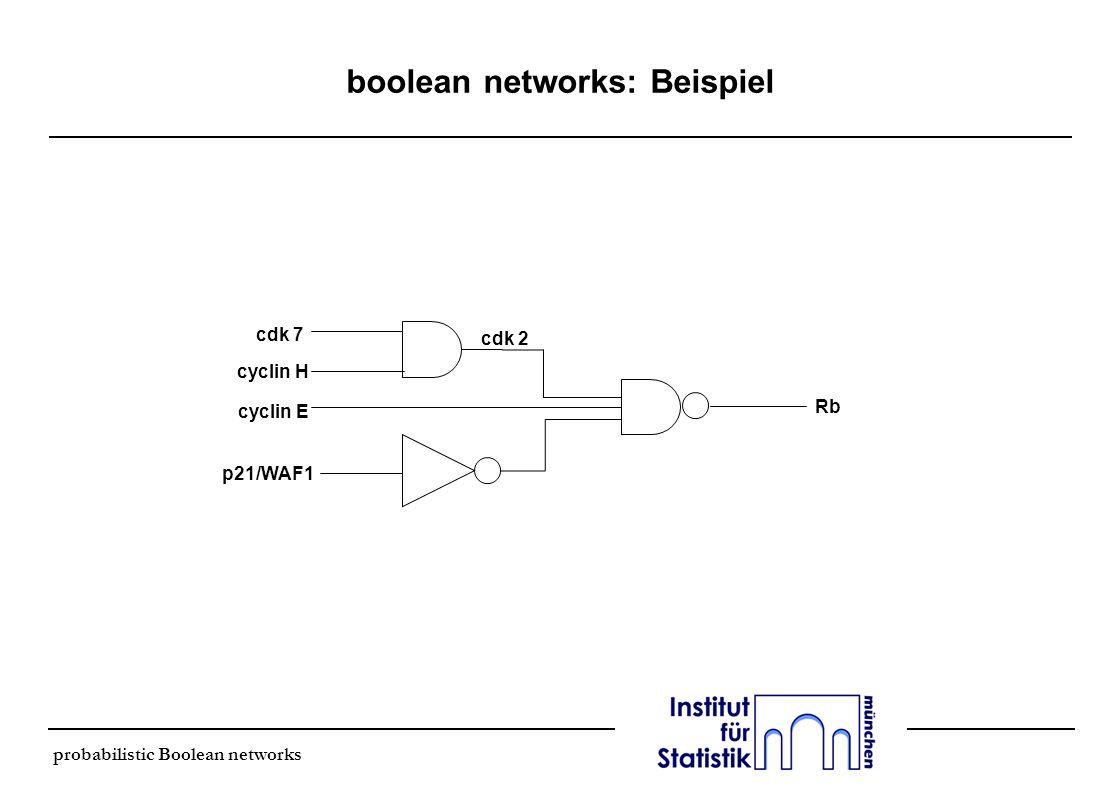probabilistic Boolean networks boolean networks: Dynamik cdk 7 cyclin H cdk 2 x1 x2 x3 l um die dynamische Struktur zu erfassen, wird das Netzwerk gemäß den Regeln erneuert l x i = f i (x i1,…, x n ) l Gene am Zeitpunkt t (INPUT) korrespondieren zu den Genen am Zeitpunkt t+1 (OUTPUT) x1x1 x2x2 x3x3 x 3 00 0 01 0 10 0 11 1