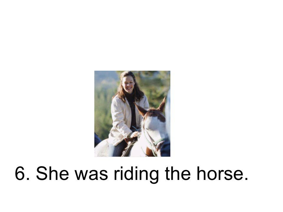 6. Sie ritt das Pferd. Sie hat das Pferd geritten.