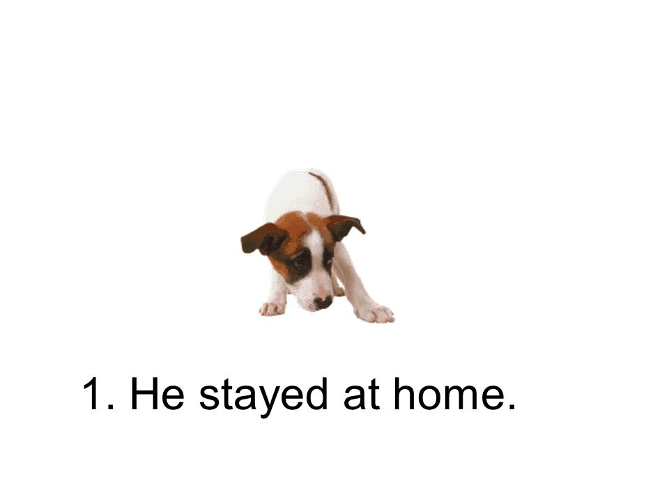 1. Er blieb zu Hause. Er ist zu Hause geblieben.