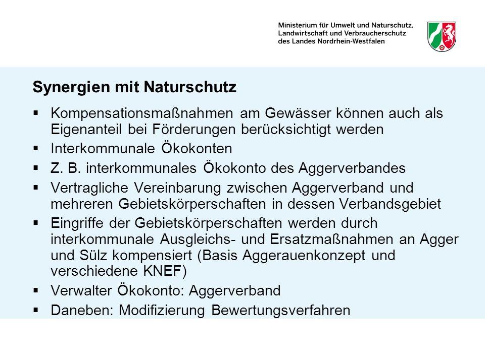 Zusammenfassung Wichtigste Fördermöglichkeiten bleiben Landesförderprogramme Umfassende Übersicht bietet Förderbroschüre Unterstützung und Förderung bei Umsetzung der WRRL in NRW Gem.