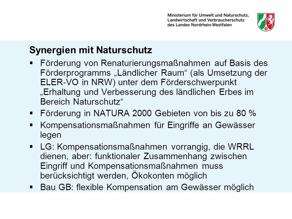 Synergien mit Naturschutz Kompensationsmaßnahmen am Gewässer können auch als Eigenanteil bei Förderungen berücksichtigt werden Interkommunale Ökokonten Z.