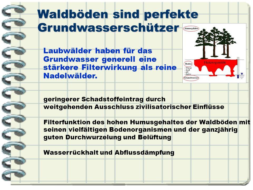 Mehr oder weniger belastetes Niederschlagswasser Emissionen aus Verkehr, häusliche Abwässer, Verbrennungsprodukte, Öl und Schmierstoffe, Korrosionsprodukte (z.B.