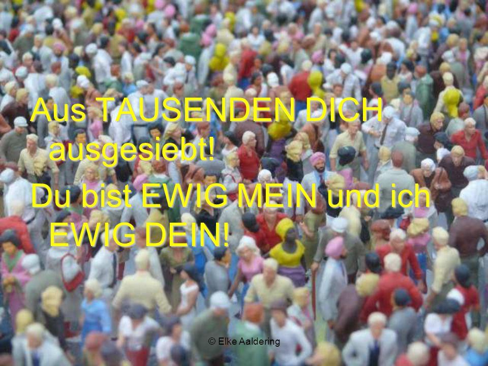 © Elke Aaldering Aus TAUSENDEN DICH ausgesiebt! Du bist EWIG MEIN und ich EWIG DEIN!