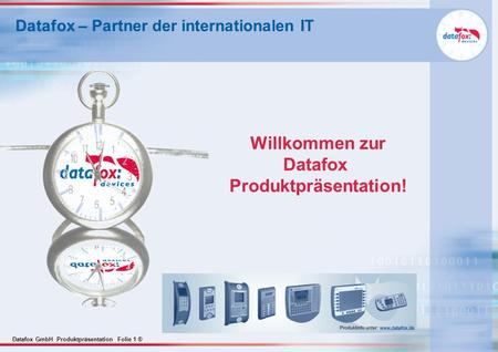 Datafox – Partner der internationalen IT