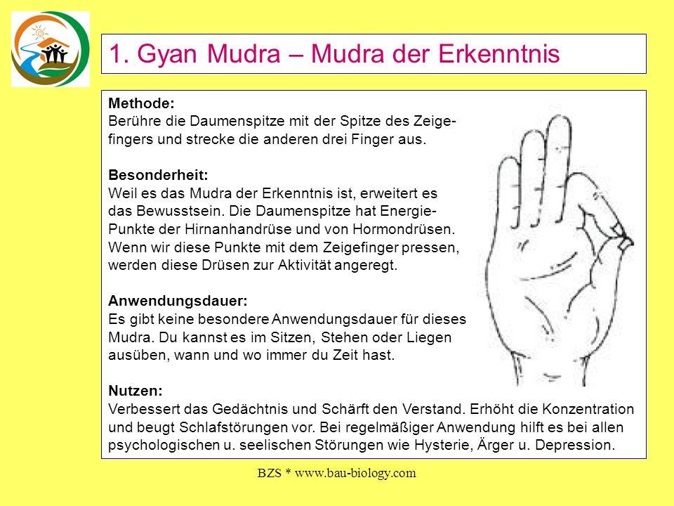 BZS * www.bau-biology.com Methode: Die Spitzen von Ringfinger und Daumen berühren sich.