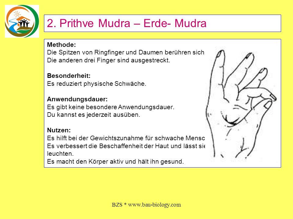 BZS * www.bau-biology.com Methode: Die Spitze des kleinen Fingers und des Daumens berühren sich.