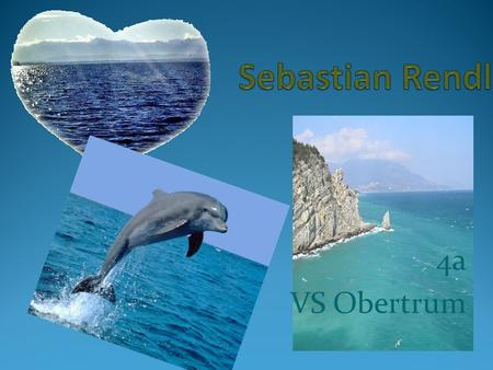 Sebastian Rendl 4a VS Obertrum.