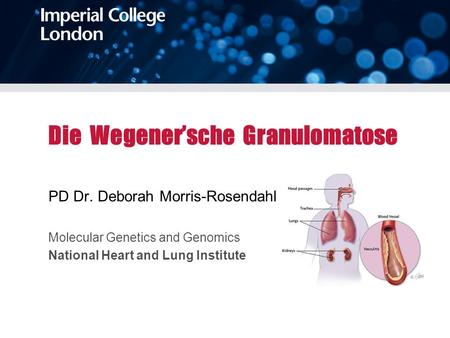 Die Wegenersche Granulomatose PD Dr. Deborah Morris-Rosendahl Molecular Genetics and Genomics National Heart and Lung Institute.