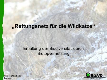 Friends of the Earth Germany Rettungsnetz für die Wildkatze Erhaltung der Biodiversität durch Biotopvernetzung Friends of the Earth Germany.