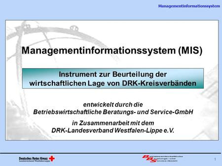 Managementinformationssystem (MIS)