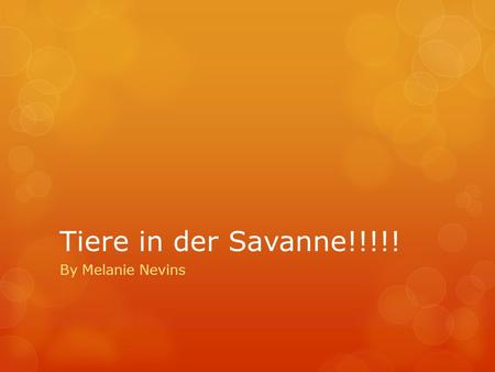 Tiere in der Savanne!!!!! By Melanie Nevins.