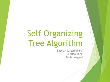 Self Organizing Tree Algorithm