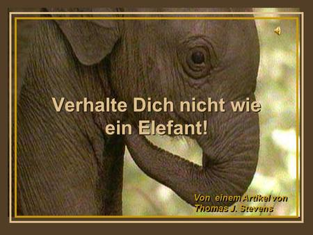 Turn on your speakers! Turn on your speakers! Verhalte Dich nicht wie ein Elefant! Von einem Artikel von Thomas J. Stevens Von einem Artikel von Thomas.