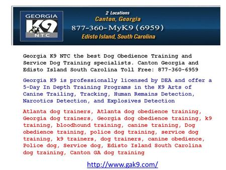Georgia K9 NTC the best Dog Obedience Training and Service Dog Training specialists. Canton Georgia and Edisto Island South Carolina.