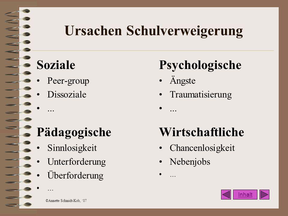 ©Annette Schmidt-Kob, ´07 Entwicklungs- und Vernetzungsprozess Interne Klärung Interne Vernetzung Kooperation Erziehungsberechtigte Externe Klärungsprozesse Externe Vernetzungsprozesse Inhalt