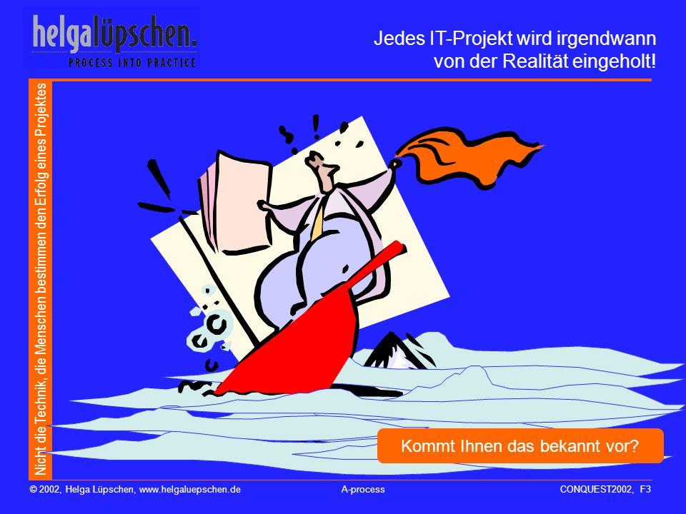 Nicht die Technik, die Menschen bestimmen den Erfolg eines Projektes © 2002, Helga Lüpschen, www.helgaluepschen.deA-processCONQUEST2002, F3 Jedes IT-Projekt wird irgendwann von der Realität eingeholt.