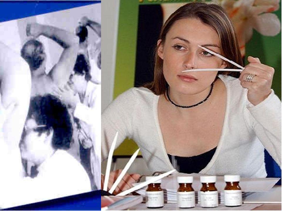 Festkörperchemie / WZU Chemie des Parfums Prof. Dr. Armin Reller Girls Day 27.04.2006 Schweisspore