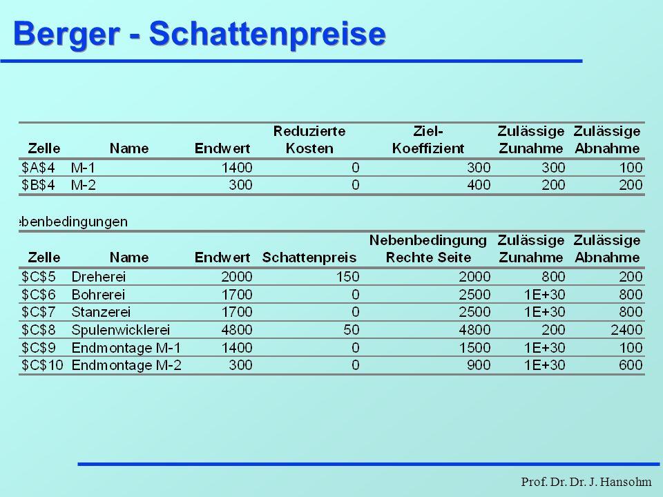 Prof. Dr. Dr. J. Hansohm Berger - Schattenpreise