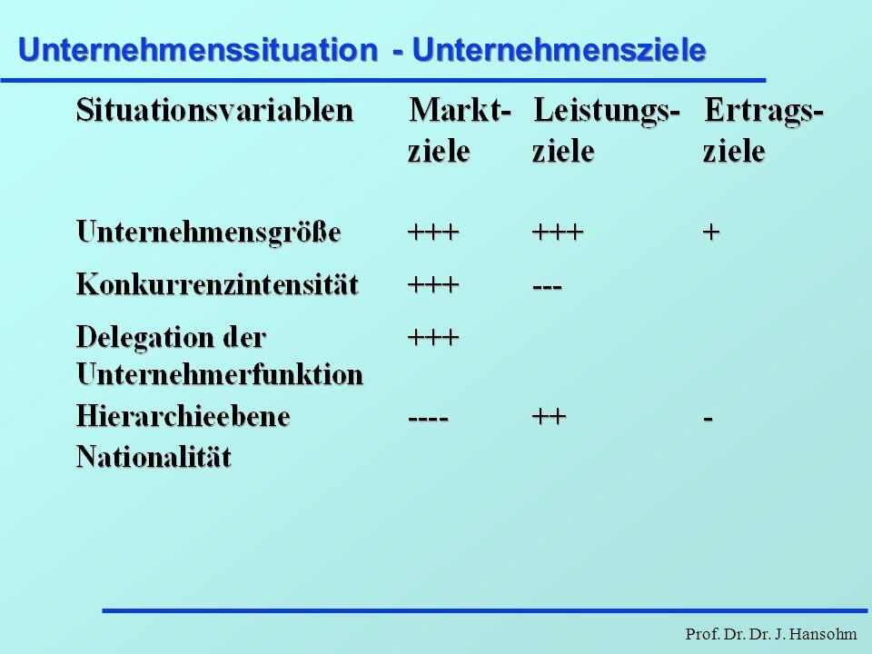 Prof. Dr. Dr. J. Hansohm Unternehmenssituation - Unternehmensziele