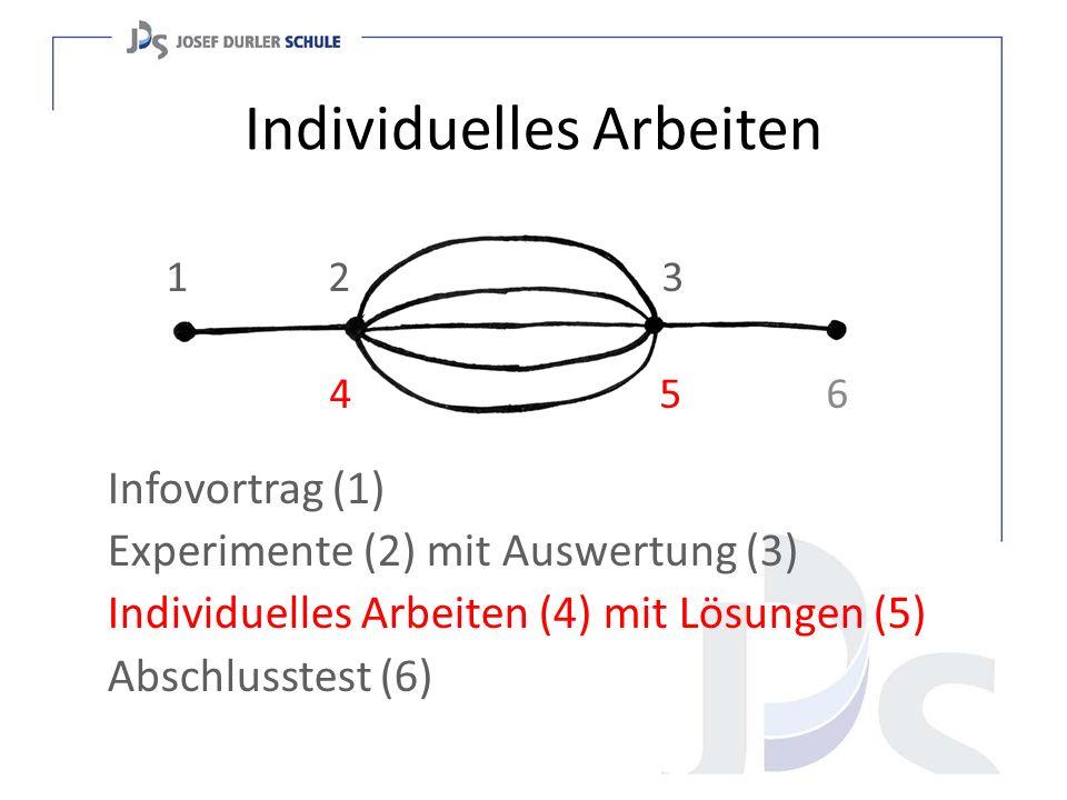Individuelles Arbeiten Selber entscheiden ob alleine oder in Partner- oder Gruppenarbeit.
