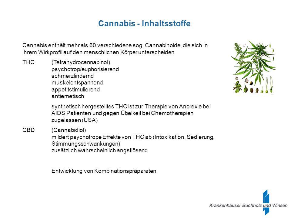 Cannabis – Wirkung im Körper Cannabis-Rezeptoren sitzen in Schlüsselregionen für das motorische System, für das Belohnungssystem und für Lernvorgänge Frontaler Cortex