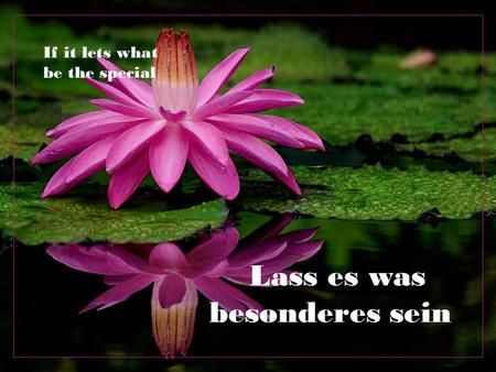 Lass es was besonderes sein If it lets what be the special.
