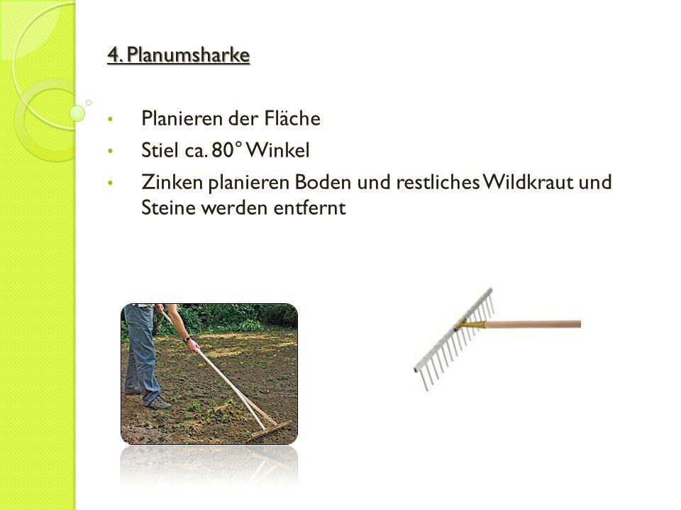 5.Reihenzieher Die benötigten Reihen (Furchen) für die Aussaat ziehen (Abstände beachten!) 6.
